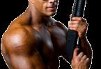 Macht Serotoninmangel aggressiv